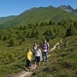 Wanderspaß und Naturgenuss auf dem Meransner Hochplateau